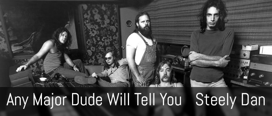 Any Major Dude Will Tell You, Steely Dan guitar arrangement